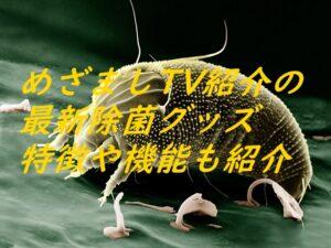 めざましTV紹介の最新除菌グッズ特徴や機能も紹介